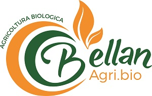 Logo Bellan
